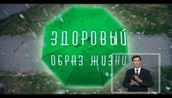 vlcsnap-2018-04-23-14h12m47s917